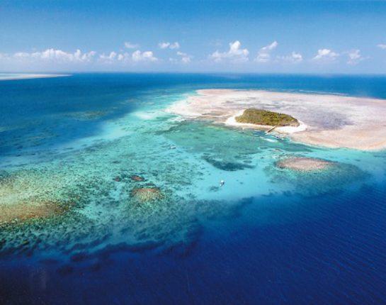 グリーン島(世界遺産)(写真提供:日本旅行ケアンズ支店)